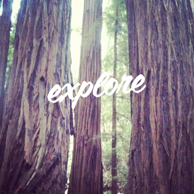 explore via teacollection.com